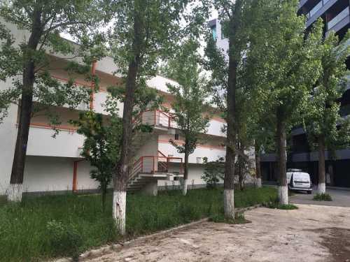 Foto Vila Mamaia Nord Mamaia