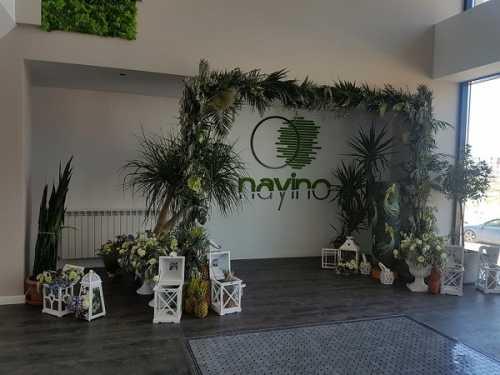 Foto Hotel Nayino Mamaia Nord