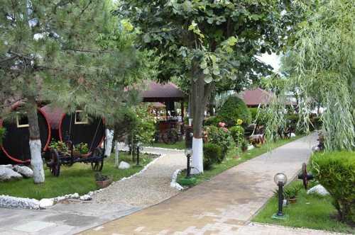 Foto Hotel Poienita Costinesti