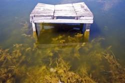 Fost ponton de pe lacul Neptun
